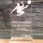 Pokal Tor des Jahres 2015