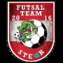 Futsal Steyr