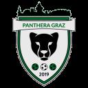 Panthera Graz Futsal Akademie